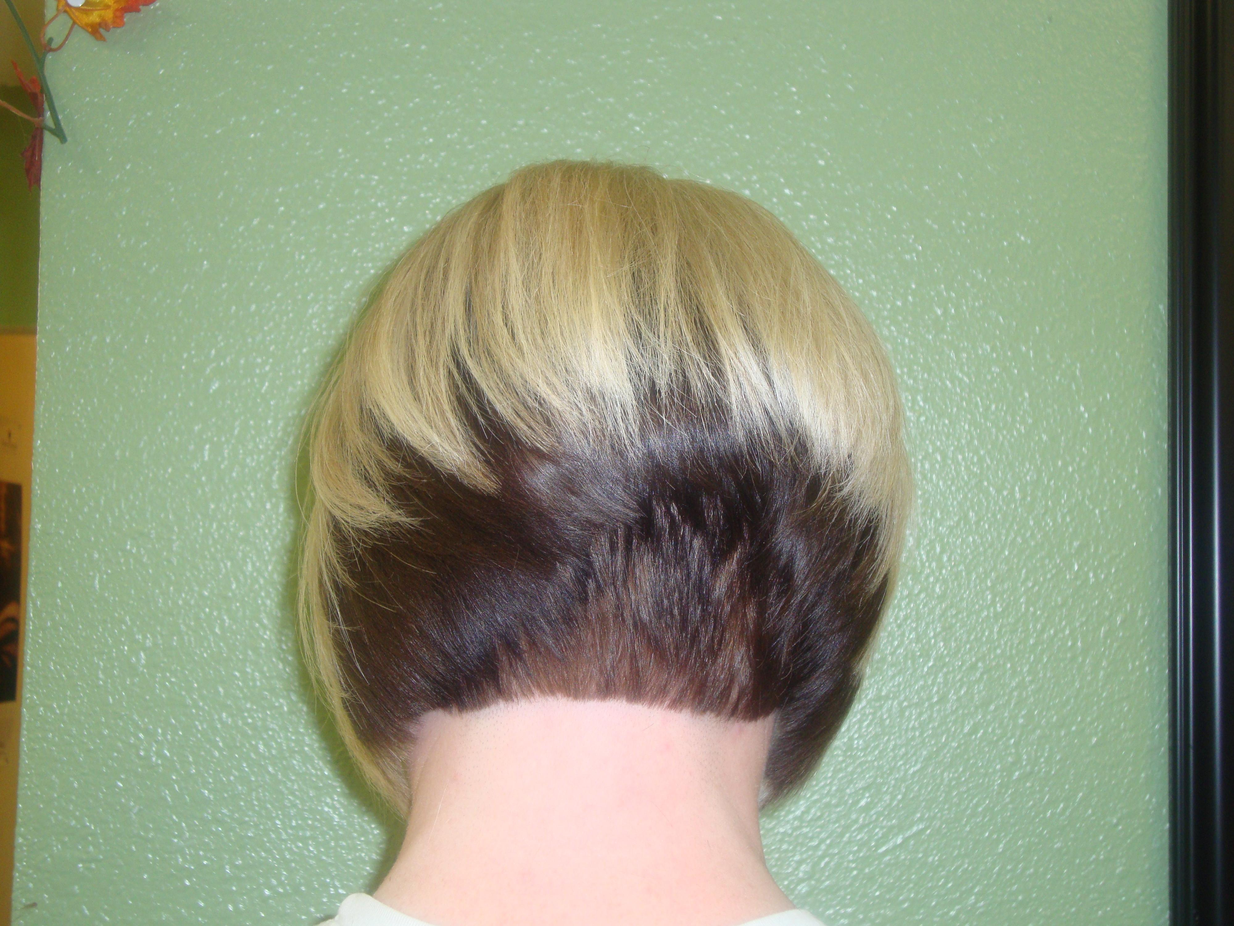 Short Asymmetrical Bob Back View